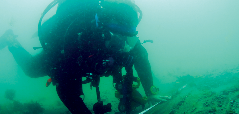 An Underwater World of Measurements, Positions, and Spatial Relationships