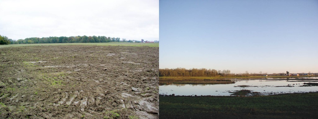 Taylor's farm after excavation to create a pool area; right: after flooding.