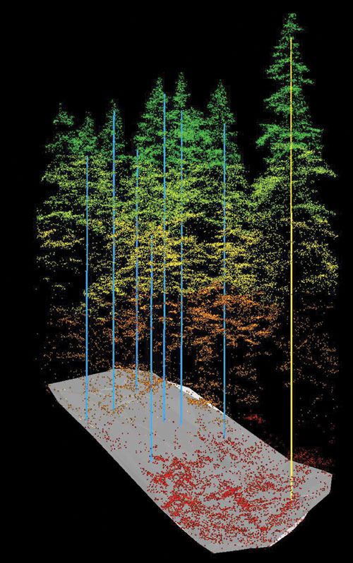 "This lidar point cloud (colored by elevation with ground sample plots overlaid) depicts the capability of lidar to penetrate the forest canopy to model both forest structure and the ""bare earth"" surface. Credit: the University of Victoria."