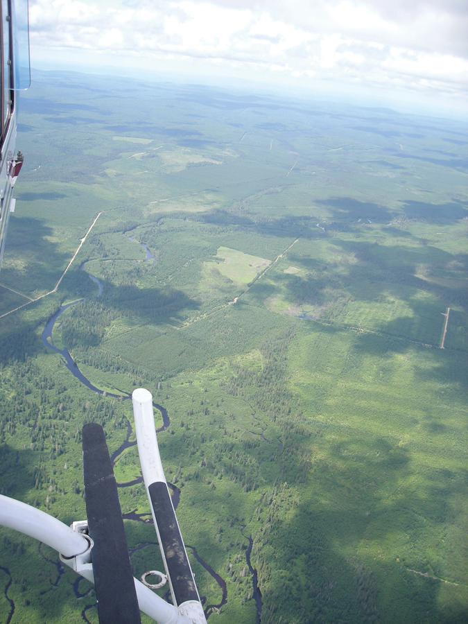 View of Mirimichi River from TIR flight conducted in 2013 in New Brunswick, Canada.