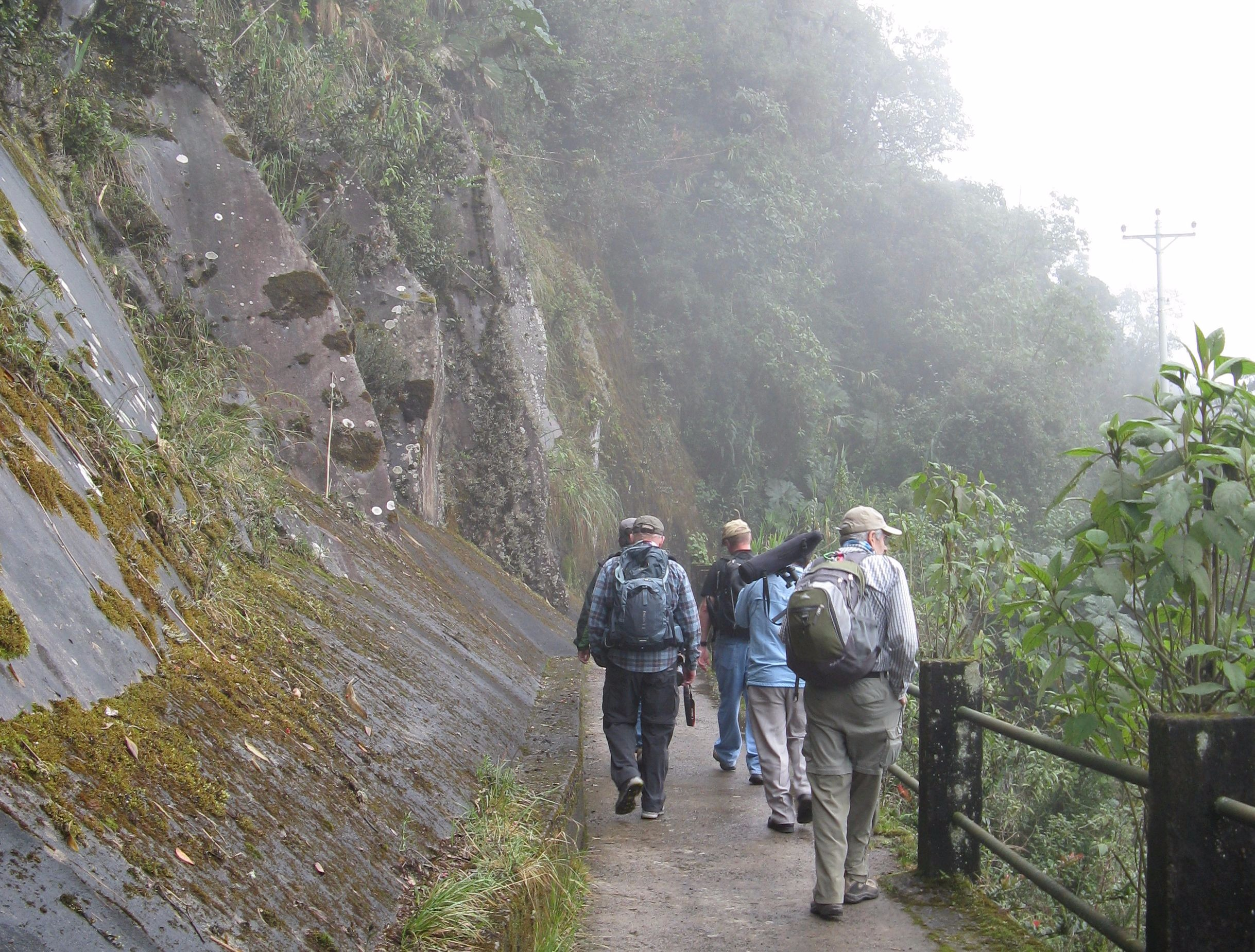 A hike in the Yanacocha Nature Reserve.
