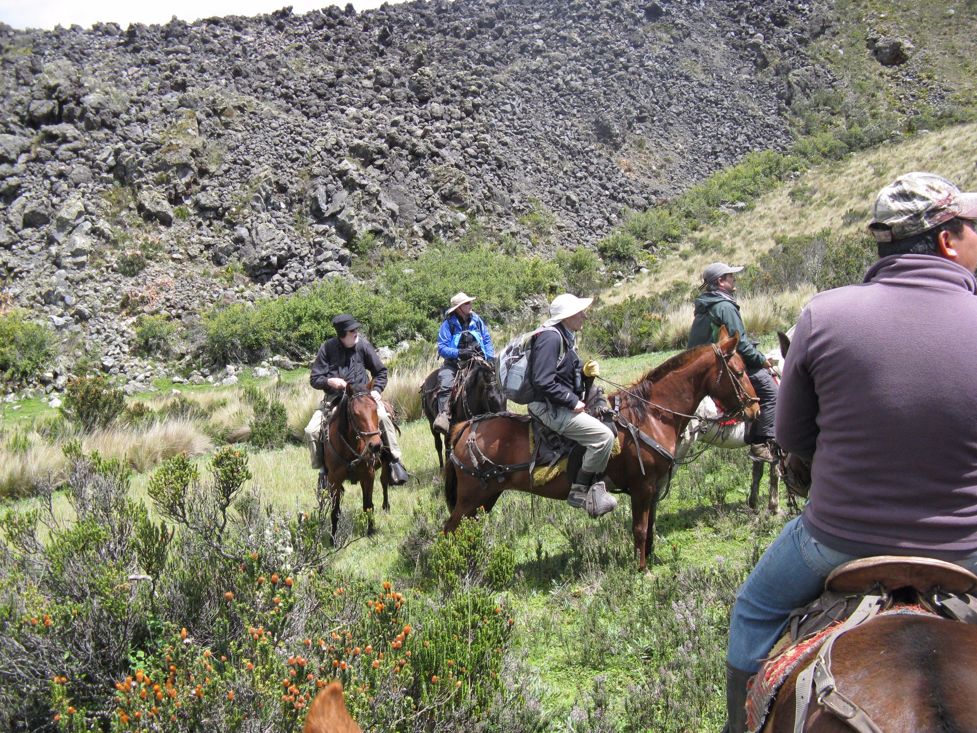 Horseback adventure for the team in Ecuador.